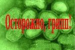Памятка для населения по профилактике гриппа A (H1N1)2009
